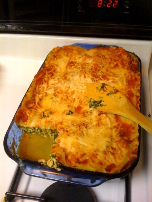 Lasagna_dish