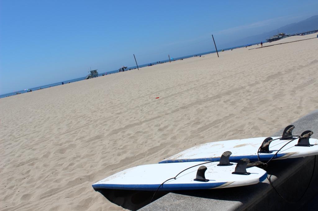 Venice Beach, Surfing, California