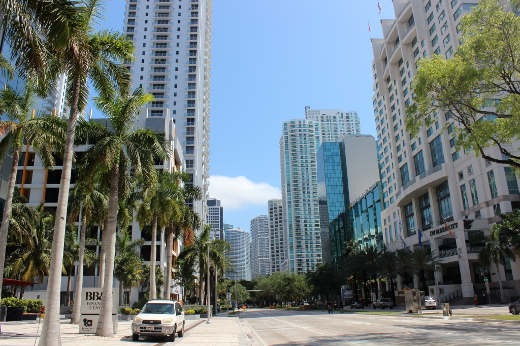 If I lived in Miami, this would be my view walking to work. A girl can dream.
