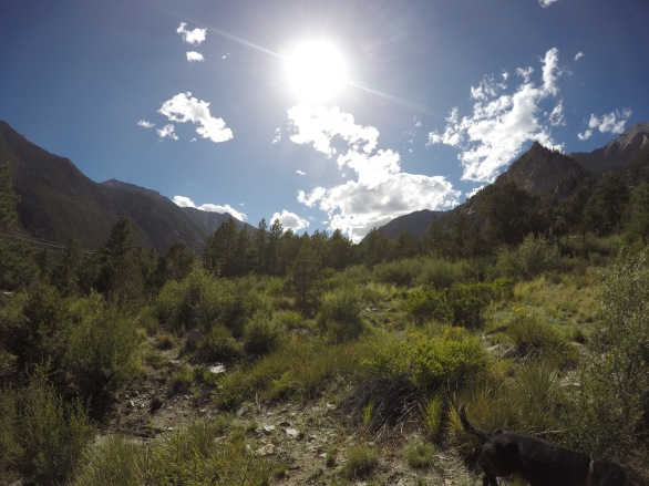 This is our American Dream - the dream of one day owning a small piece of land in the mountains.